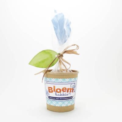12294 - Concept Unie bloempot met cakemix chocolade 350 gram