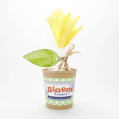 12295 - Concept Unie bloempot met cakemix limoncello 350 gram