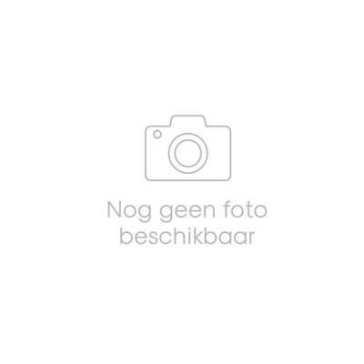 3404 - Jan Bax friese kruidkoek met rozijnen 700 gram