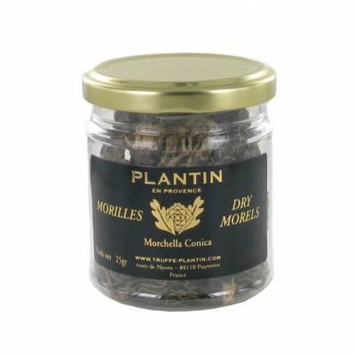 7871 - Plantin morilles zonder steel 50 gram